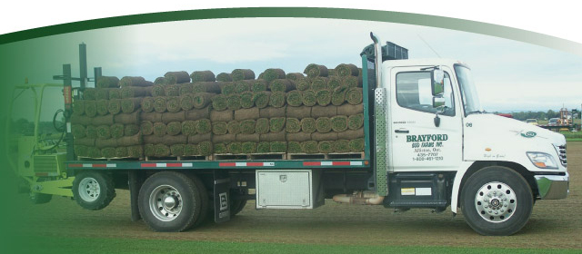 truck loaded with sod | High on Grass!