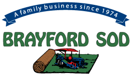 Brayford Sod Farms Inc